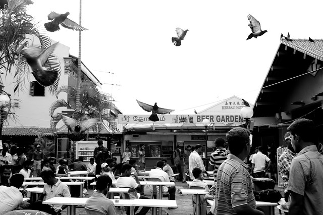 Pigeons soaring over an eating place in Little India. Alcohol might have fueled the riot, but migrant workers are in Little India just for a day of rest - with Sunday being their only rest day for most of them.