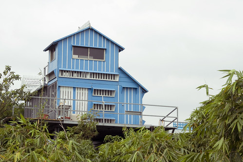 Dove house