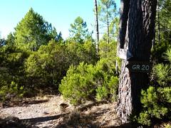 Sentier Capeddu-Sari : Bocca di Renosu
