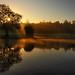 Sunrise in Cannon Hill Park11