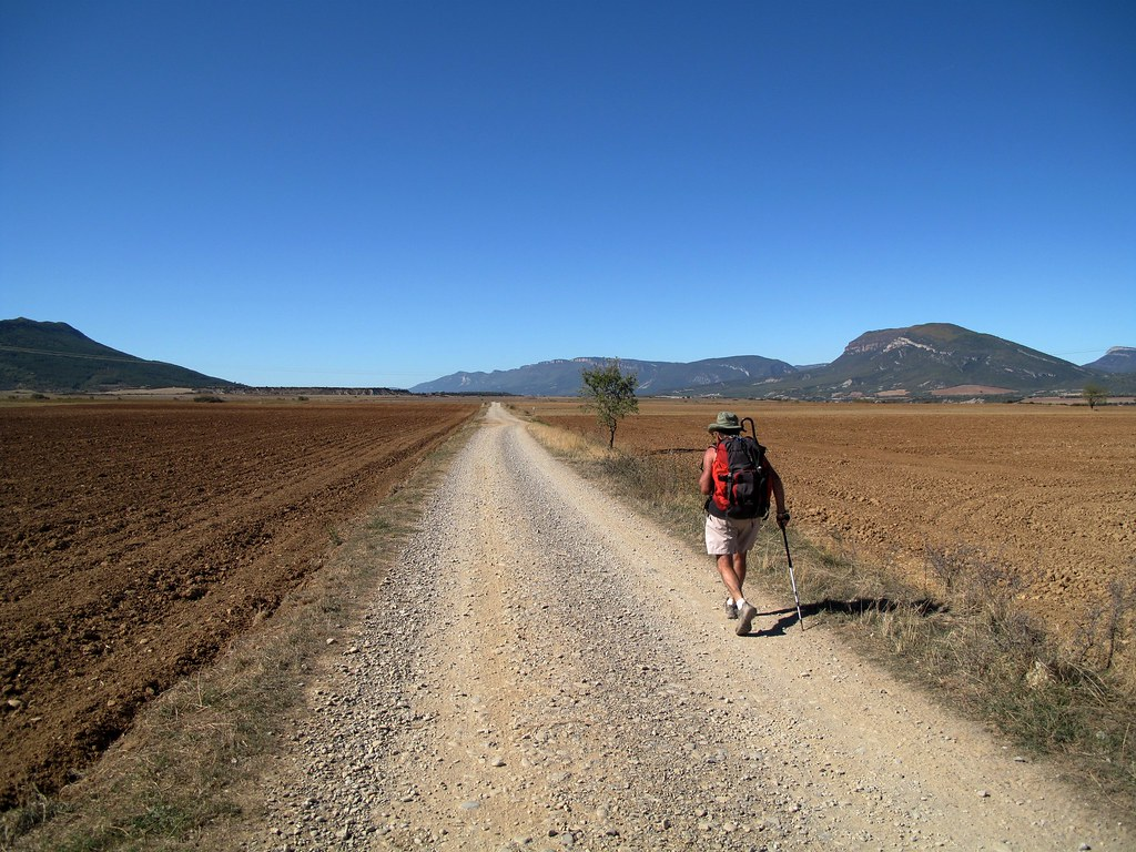 Hacia Artieda. Camino de Santiago. Camino aragonés. 4a etapa.