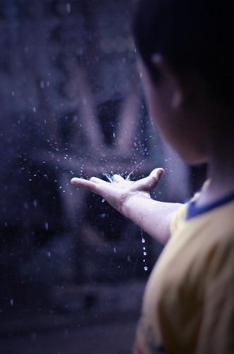 無料写真素材, 人物, 子供  男の子, ボディーパーツ  手, 雨