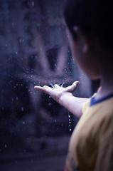 [フリー画像素材] 人物, 子供 - 男の子, ボディーパーツ - 手, 雨 ID:201203110600
