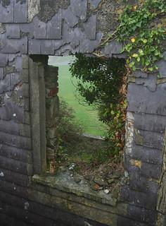 Attēls no Charles Fort pie Kinsale. overgrown ruins ivy kinsale barracks charlesfort