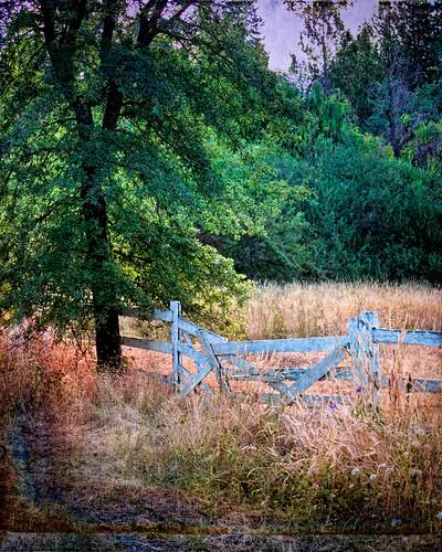 print landscape grassvalley sdosremedios size5x4 ©stevendosremedios