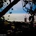 # Itanhangá | ao fundo Barra da Tijuca by © Nathan Campos