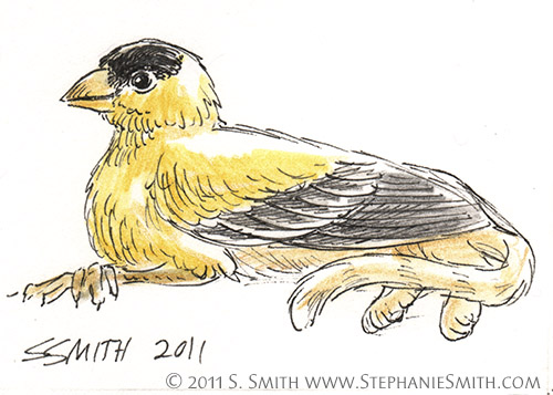 Tiny Gryphons #5 Goldfinch by Stephanie Smith
