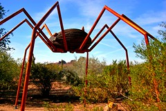 Tromping spider