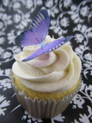 White Out Cupcake with Edible Butterfly