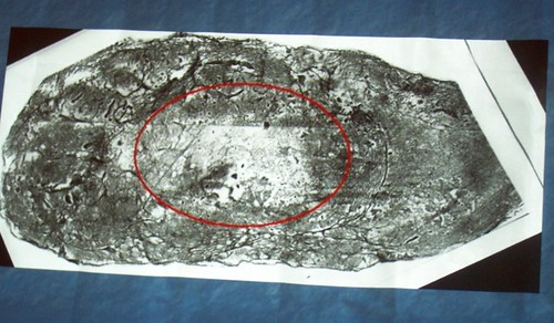 mar 125 Supposedly 'bigfoot' print