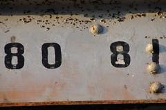 DSC04511
