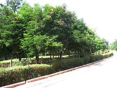 Motilal Nehru Park
