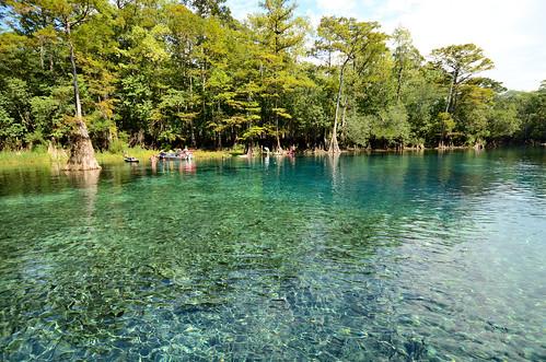 water spring florida springs freshwater morrisonspring