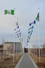 Row of NWT Flags