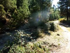 Départ sur la piste d'Argazavu (400m après l'épingle de Viseo) : le chemin de Fumicosa/Samulaghja à prendre sur la gauche