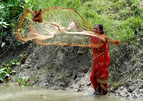 Woman setting up a fish net, Bangladesh. Photo by WorldFish, 2006