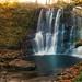 Glenariff Forest Park Waterfalls Autumn 2011 by Deirdre Gregg