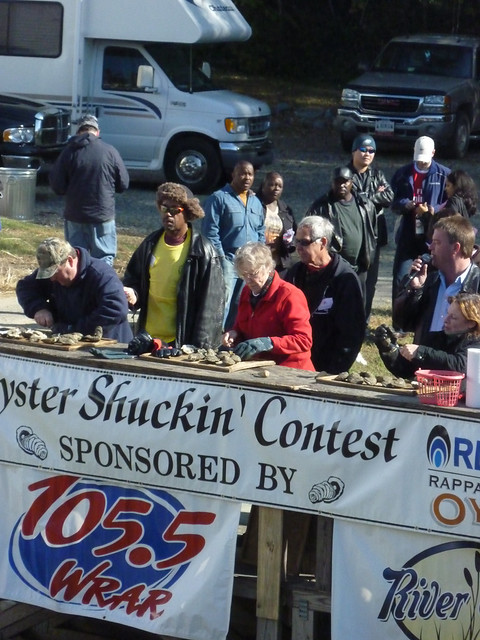 Amateur Shuckers: Adult's Contest e