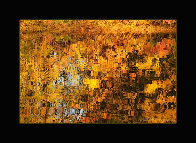 Impression of Autumn
