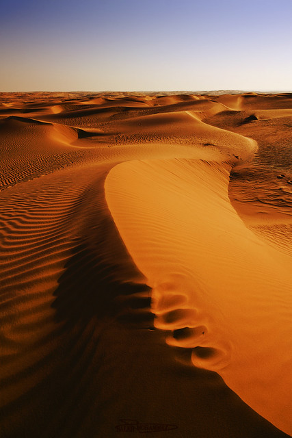 Desert  (Explore #171)