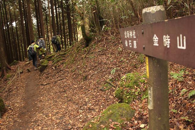 20111112_金時山_0048