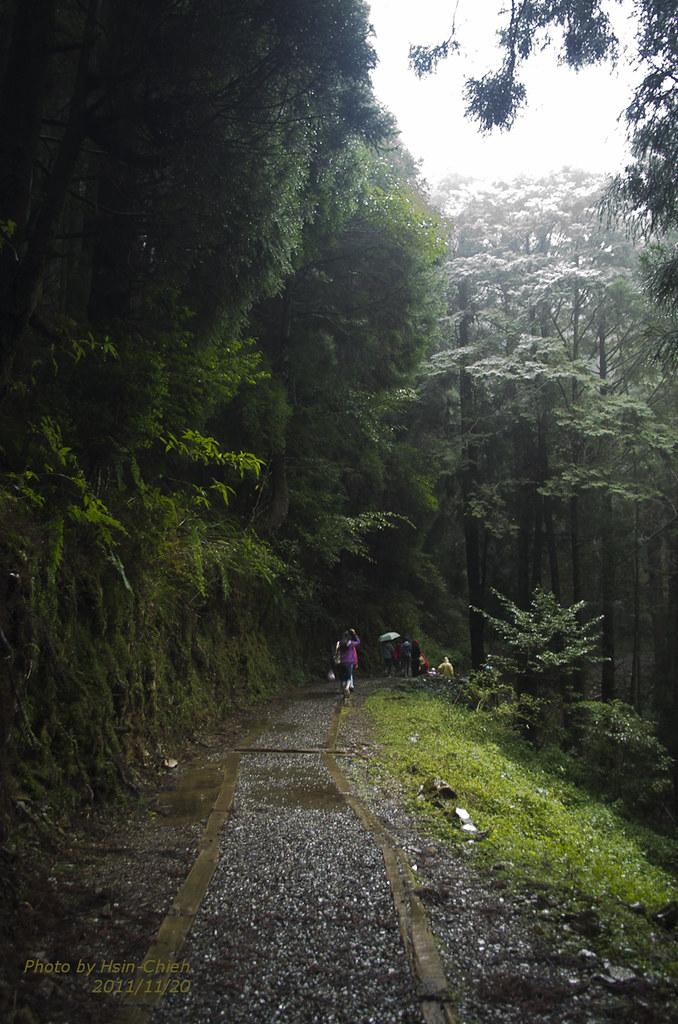 20111120-特富野古道健行