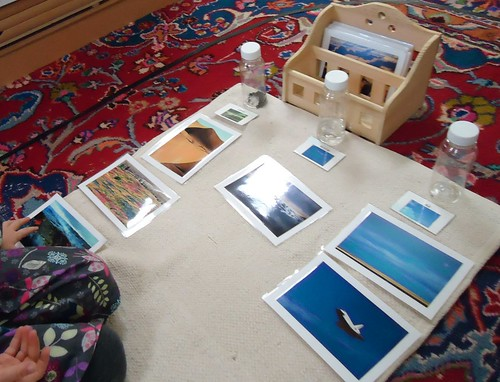 Land, Air, and Water Sorting (Photo from To the Lesson!)