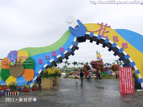 P1130283花海