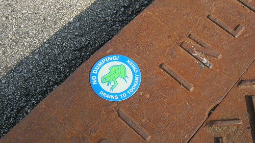 Social Action and Social Change - Storm Drain Marking 6