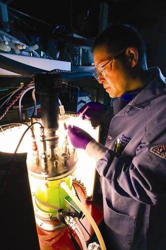 A photobioreactor (PBR)