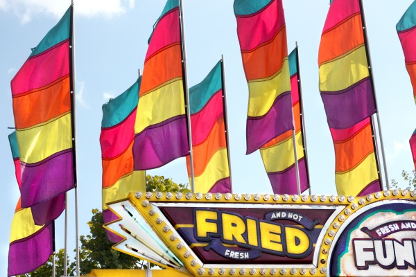 Ga Fair - Fried Fun