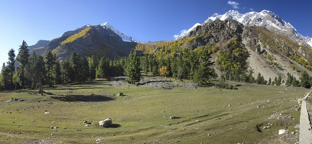 Naltar valley #2