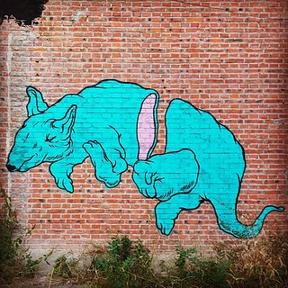 Rat #graffiti #798artdistrict