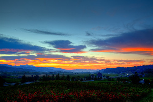 Sunrise over Alexander Valley