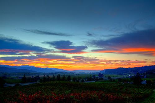 sunrise santarosa russianriver geyserpeak geyserville alexandervalley jrickardswinery lindevineyards
