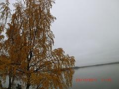 Fall on Tarvaspää