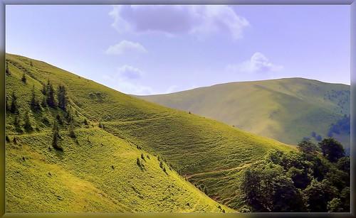 summer mountains film 35mm landscape ukraine epson nikonf4 v500 karpaty sigma28105 kodakultramax400 me2youphotographylevel2 me2youphotographylevel3 me2youphotographylevel1 me2youphotographylevel4