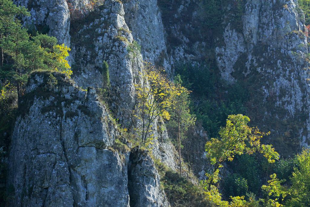 Национальный парк Ойцовский