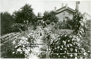 Wettengel's Flower Garden. Photo by A.F. Haase