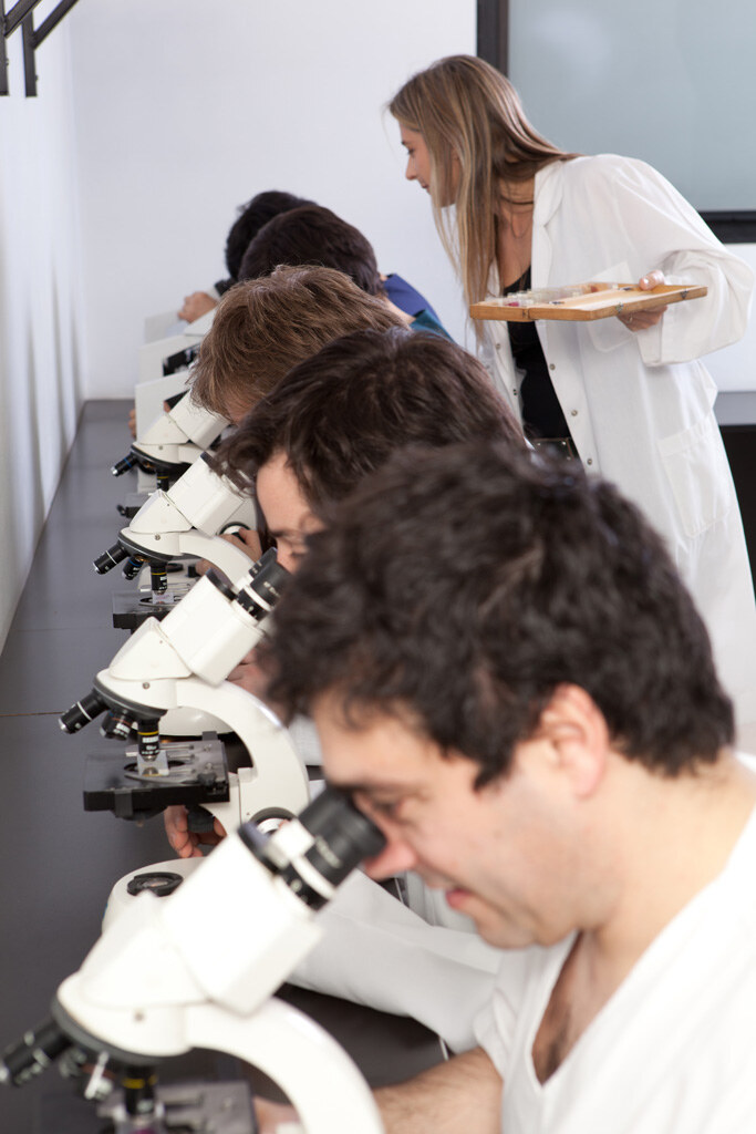 Laboratorio Microscopía