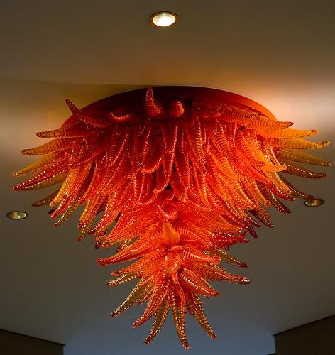Ceiling Squid