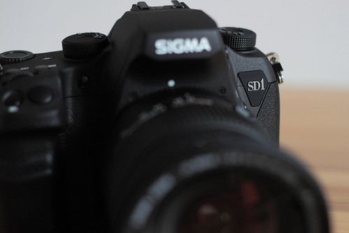 SIGMA SD1 Merrill 06