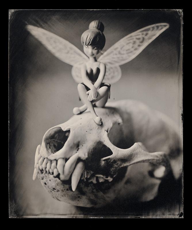 skull s