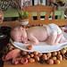 Happy Thanksgiving! by jayswanson43