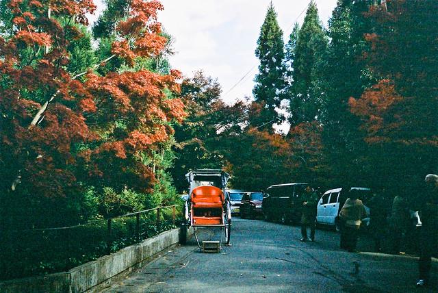 楓葉與人力車