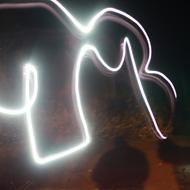 elephants don't believe in ghosts