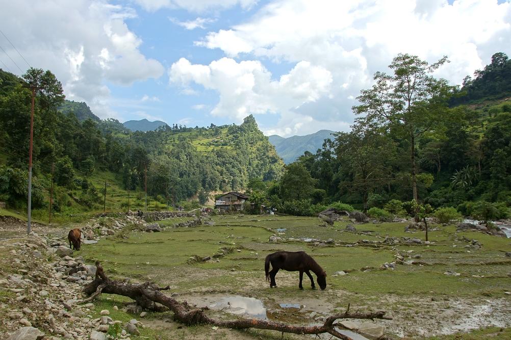 1003_Nepal_094