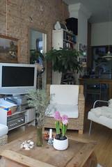 Aegir living room 12