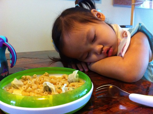 So low energy from bug that she fell asleep at lunch