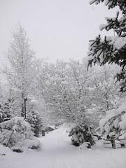 金, 2012-02-24 17:04 - 雪のWhistler Village